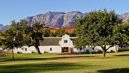 Valentine's Day:  Picnic at Webersburg Wine Estate